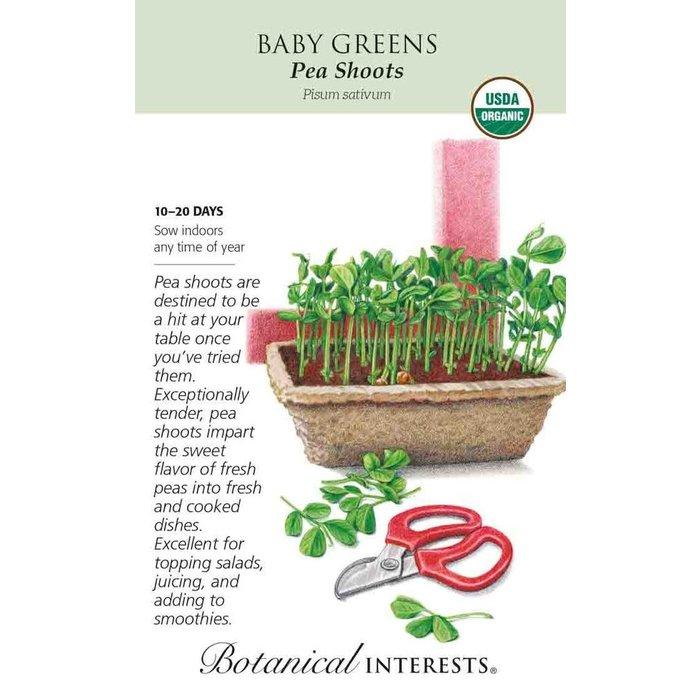 Seed Baby Greens Pea Shoots Organic - Pisum sativum Lrg Pkt
