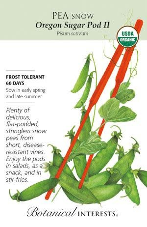 Seed Pea Snow Oregon Sugar Pod II Organic - Pisum sativum