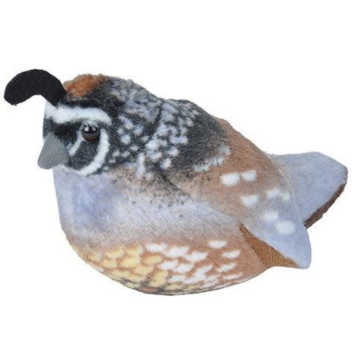 California Quail Audubon Plush Toy