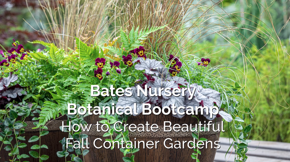 How to Create Beautiful Fall Container Gardens