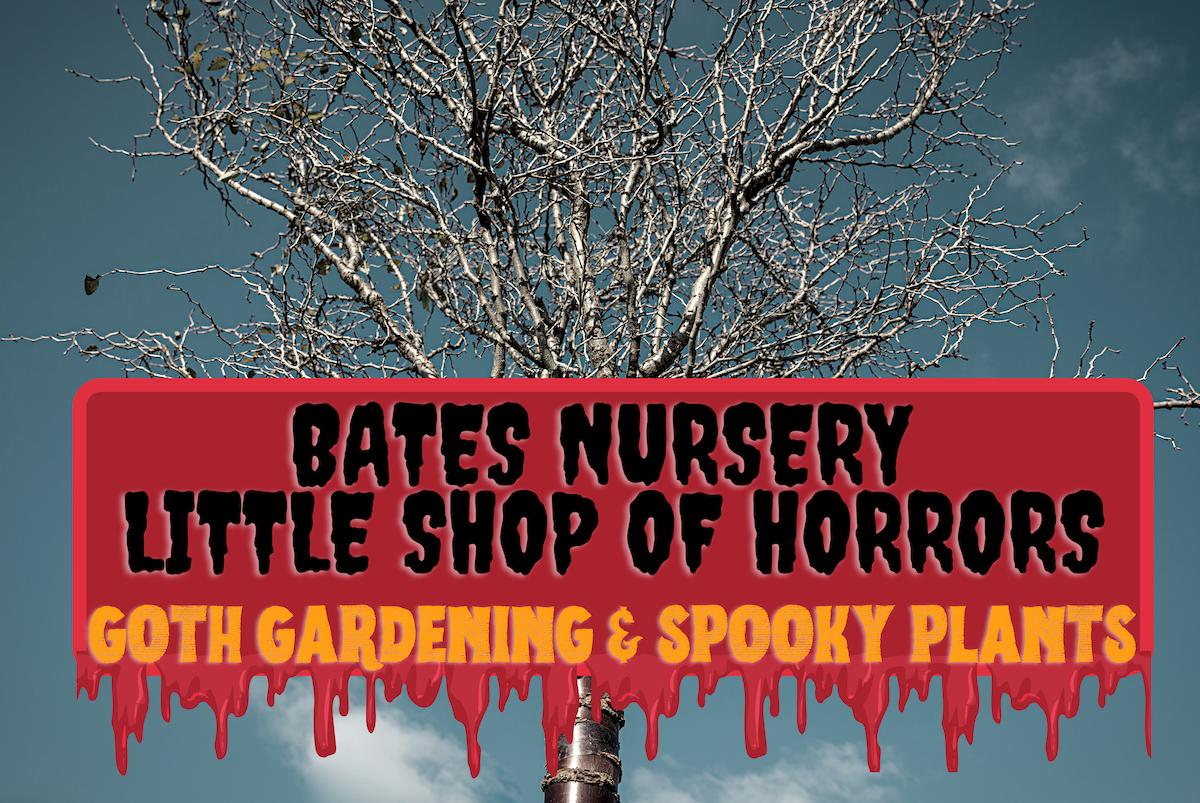 Bates Nursery Little Shop of Horrors