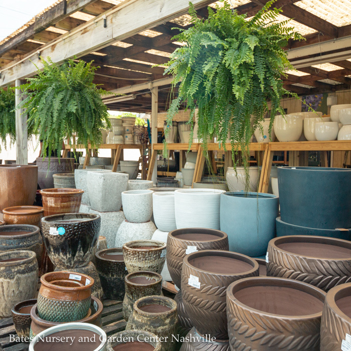 Containers & Decor