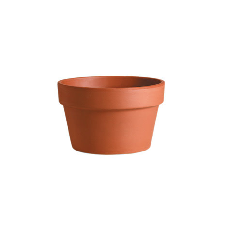 "Pot Azalea 5.5""-6"" Short Clay Standard  / Terracotta"