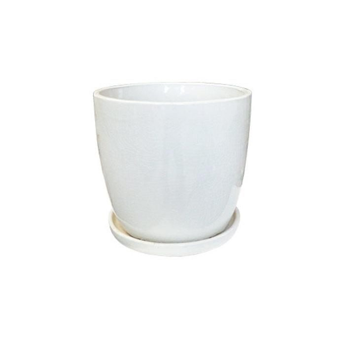 Pot Tall Egg Pot w/att Saucer Sml 9x9 Asst