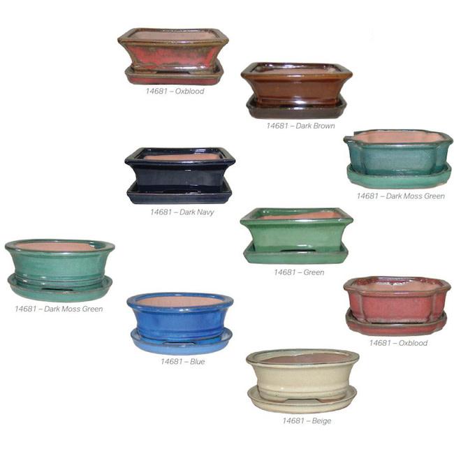Pot Bonsai Pot w/Saucer Professional Sml 6x4 Asst