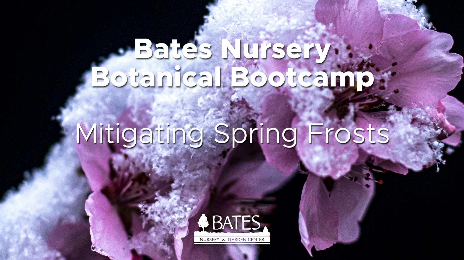 Mitigating Spring Frost Damage