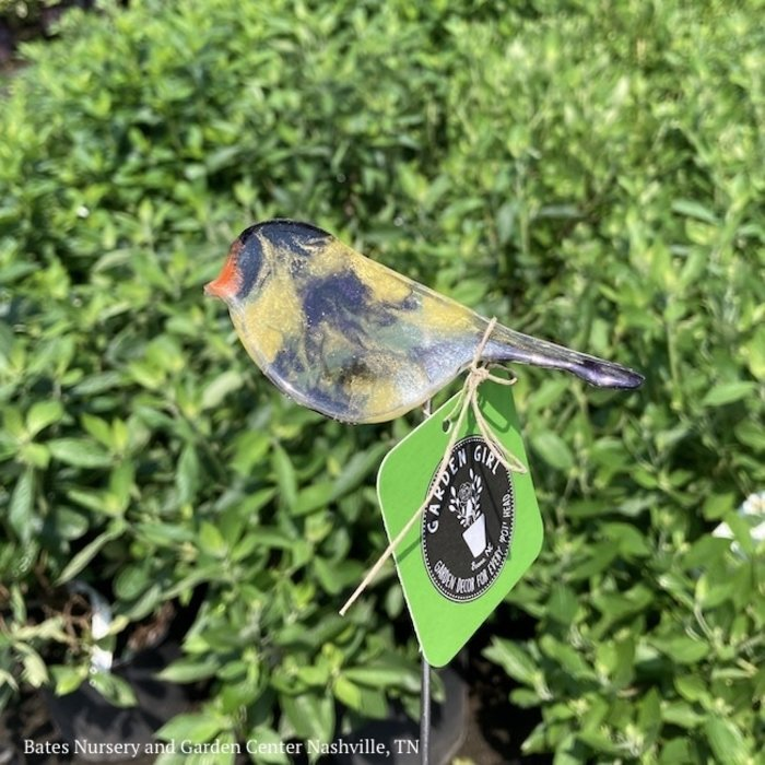 """Garden Stake Sml Goldfinch Hand Crafted 12""""h Resin"""