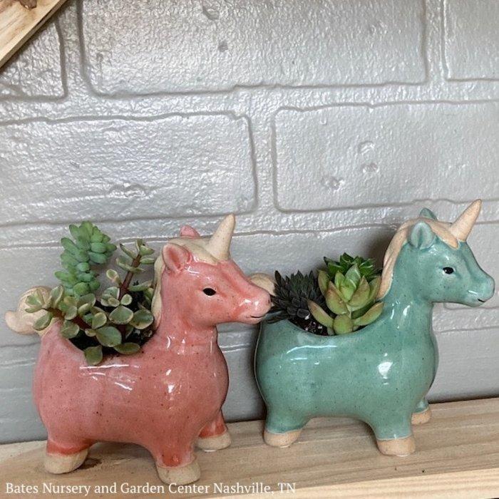 5P Stoneware Unicorn w/Succulents