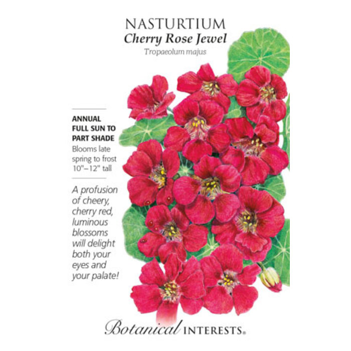 Seed Nasturtium Cherry Rose Jewel - Tropaeolum majus