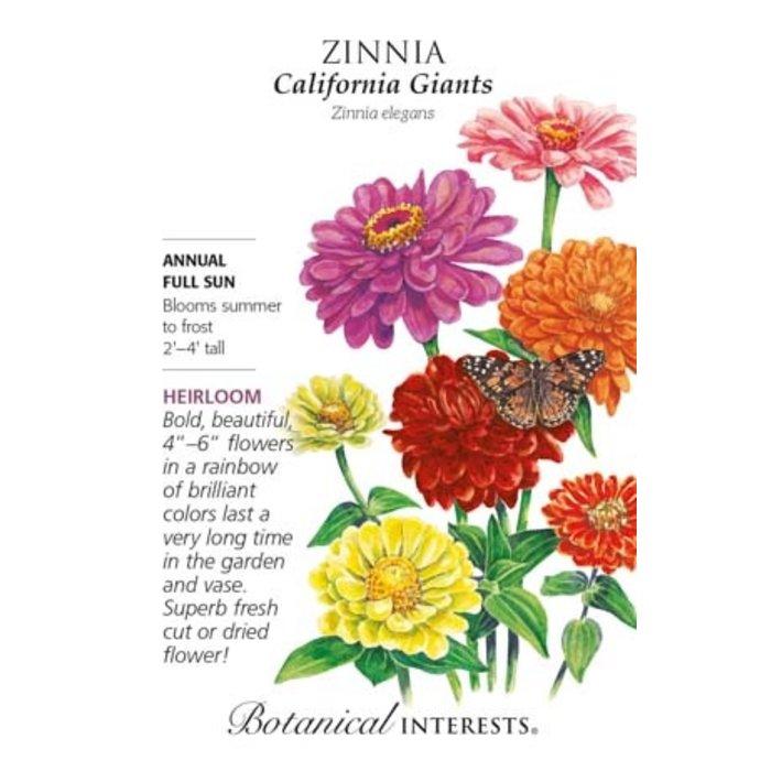 Seed Zinnia California Giants Organic - Zinnia elegans - Lrg Pkt