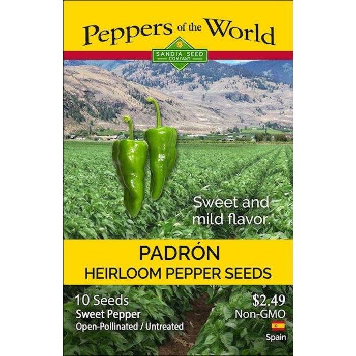 Seed Pepper Sweet Padron Heirloom - Capsicum annuum
