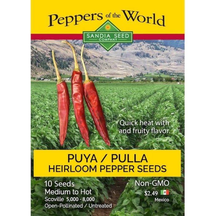 Seed Pepper Puya/Pulla Chile Heirloom - Capsicum annuum