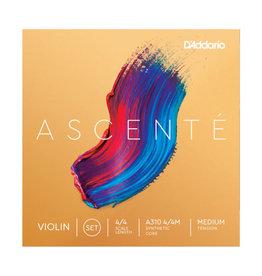 D'Addario D'Addario Ascenté Violin String Set, 4/4 Scale, Medium Tension