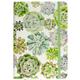 Peter Pauper Journal - Succulent Garden