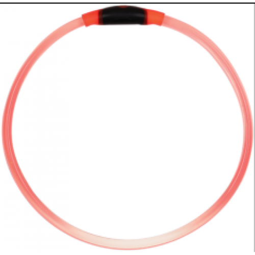Pet Food Warehouse Dog Accessory Light Up Dog Safety Necklace Red