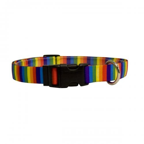 Yellow Dog Dog Collar 1in wide Large 18inch-28inch Rainbow Stripes