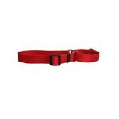 Yellow Dog Dog Collar 1in wide Large 18inch-28inch Red