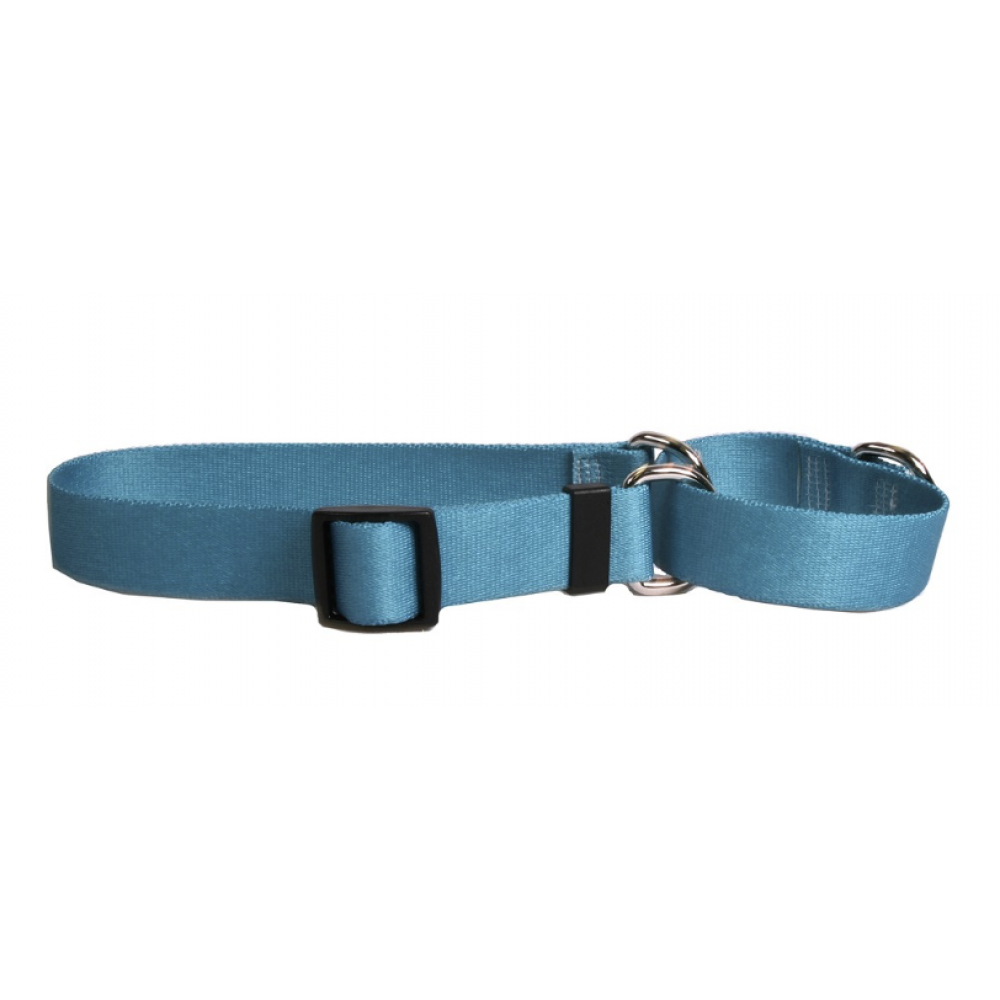 Yellow Dog Dog Collar 1in wide Large 18inch-28inch Large Teal