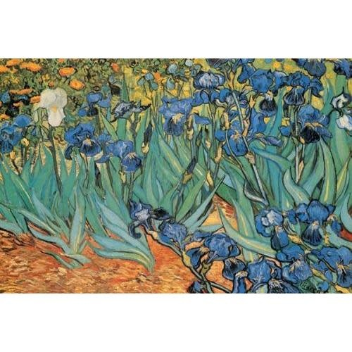 Pyramid America Poster - 24inx36in Van Gogh: Garden Of Irisis