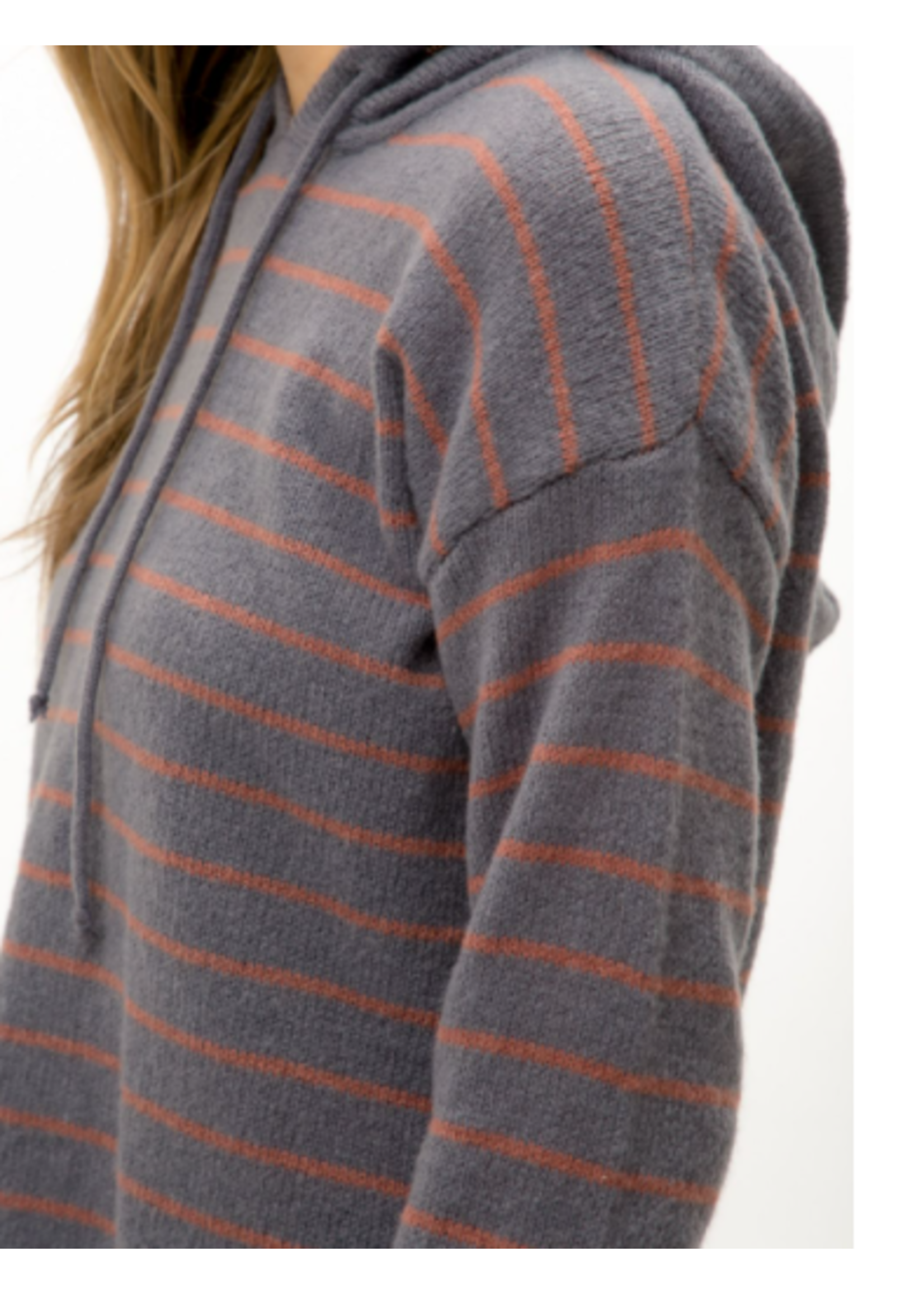 Mystree Stripe Hoodie