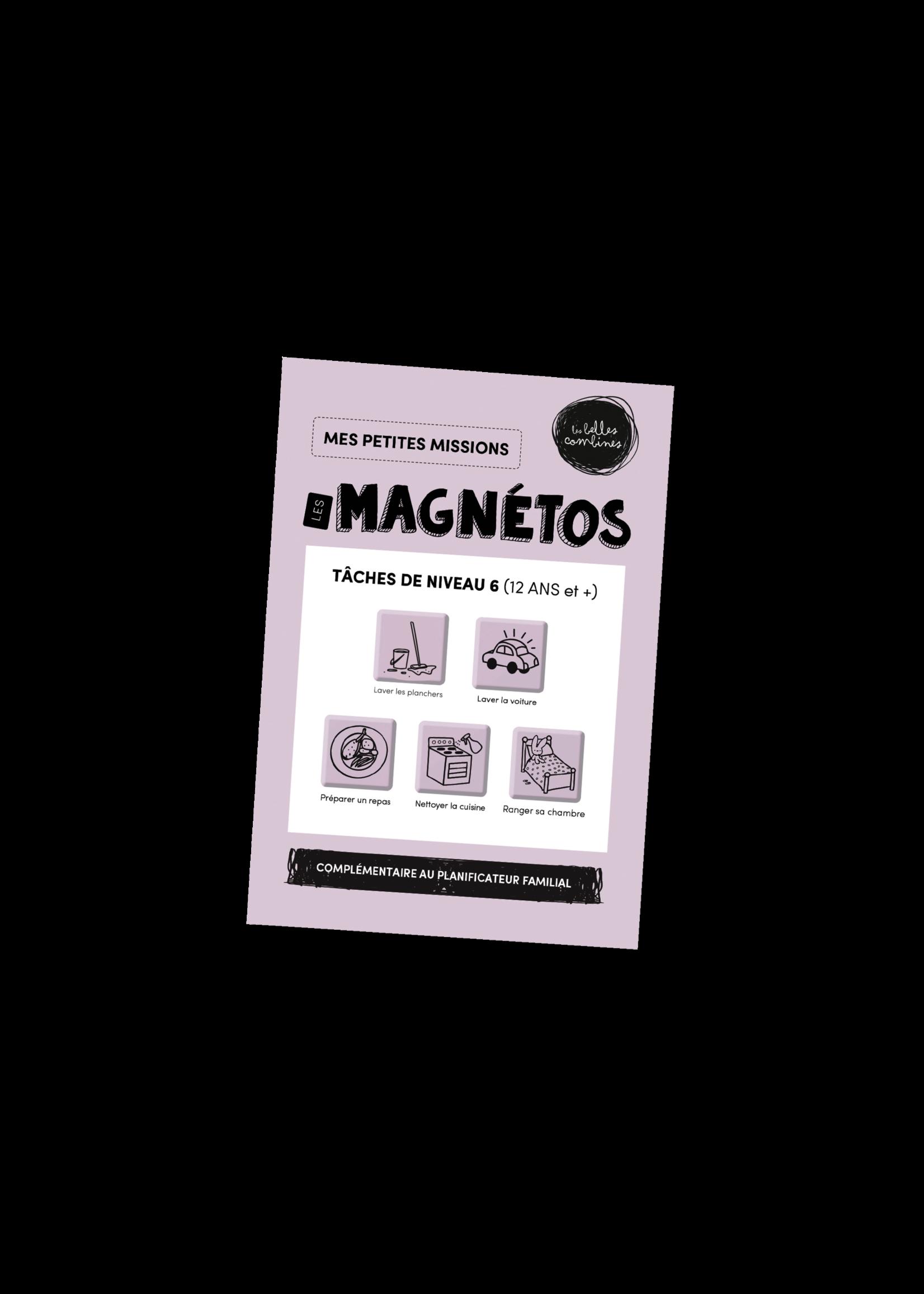 Les belles combines Les magnétos mes petites missions -Niveau 6