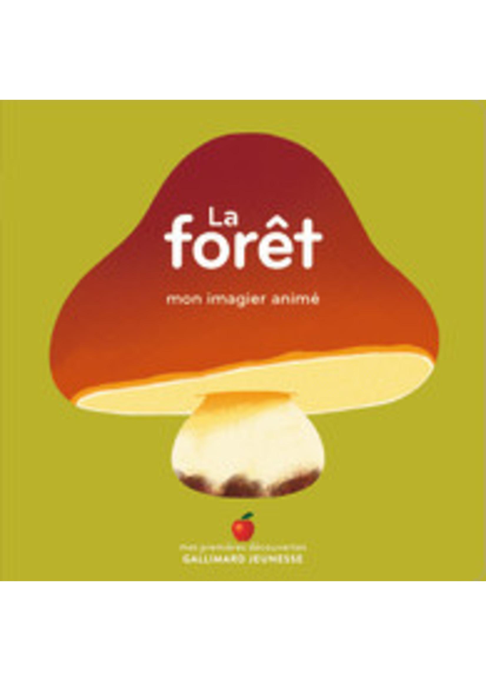Gallimard Jeunesse La forêt