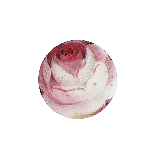 Rose with Ant Round Plate