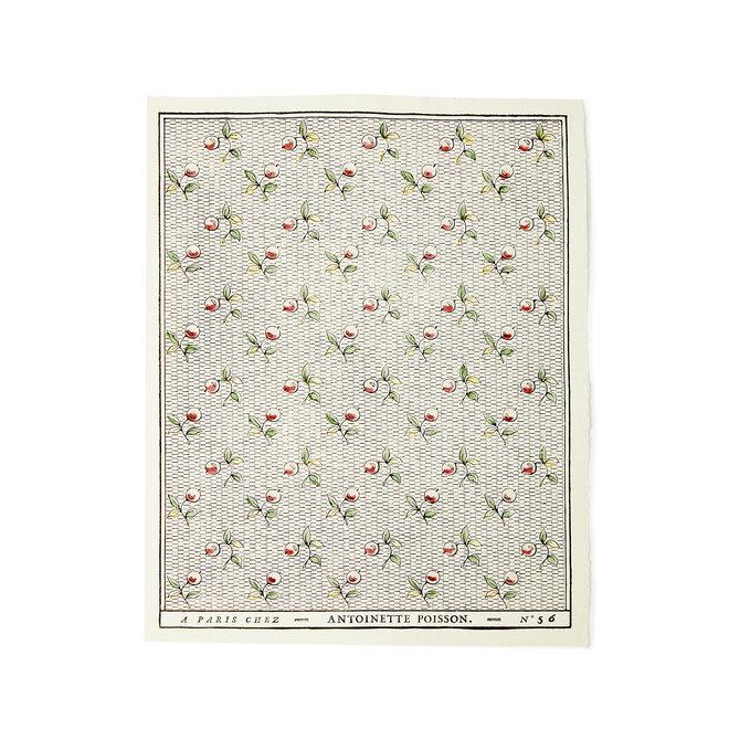 Baies Rose et Vert Domino Paper