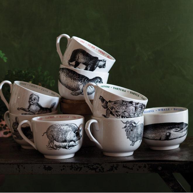 Tortoise Fauna Cup