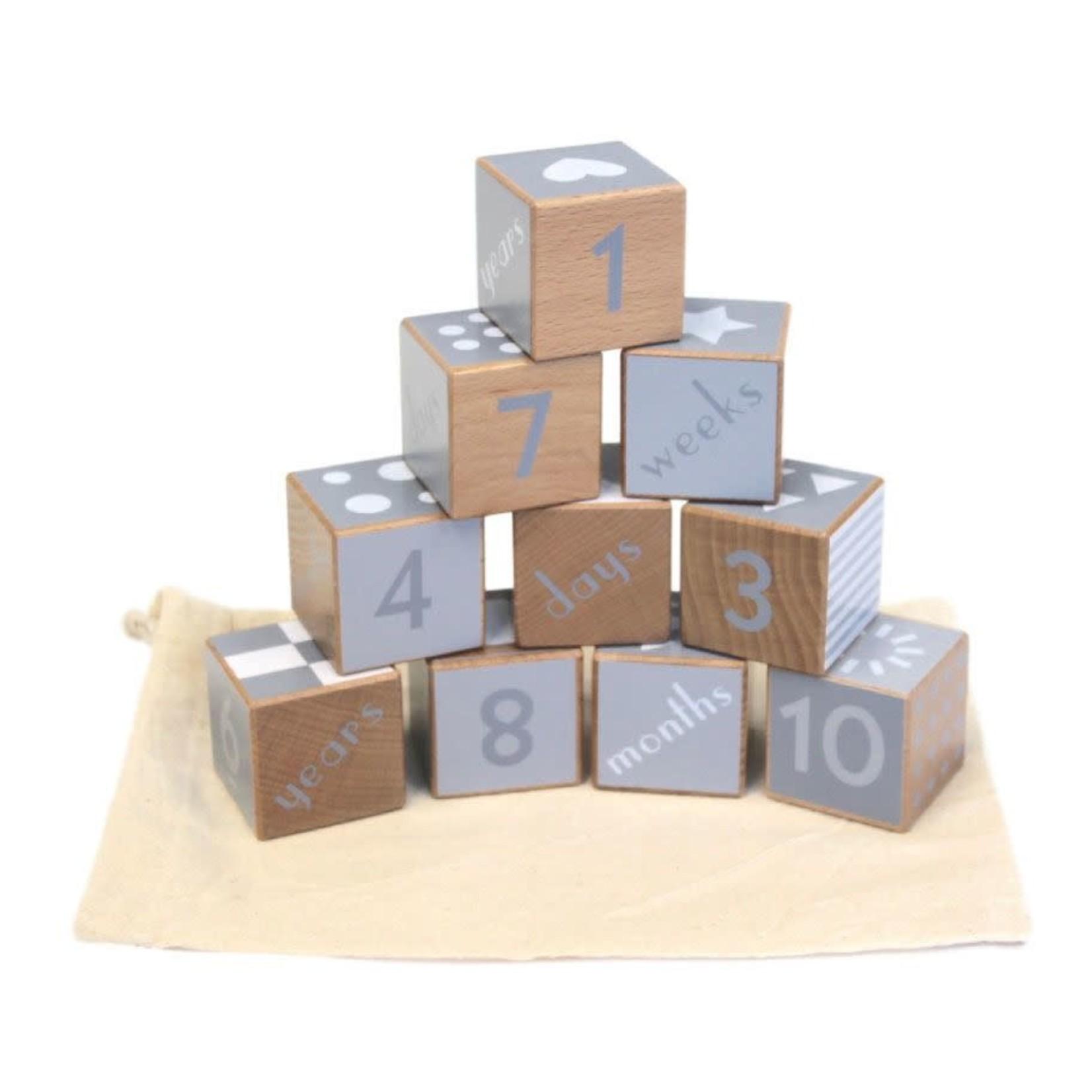 Baby Brands Discoveroo: Wooden Milestone Blocks