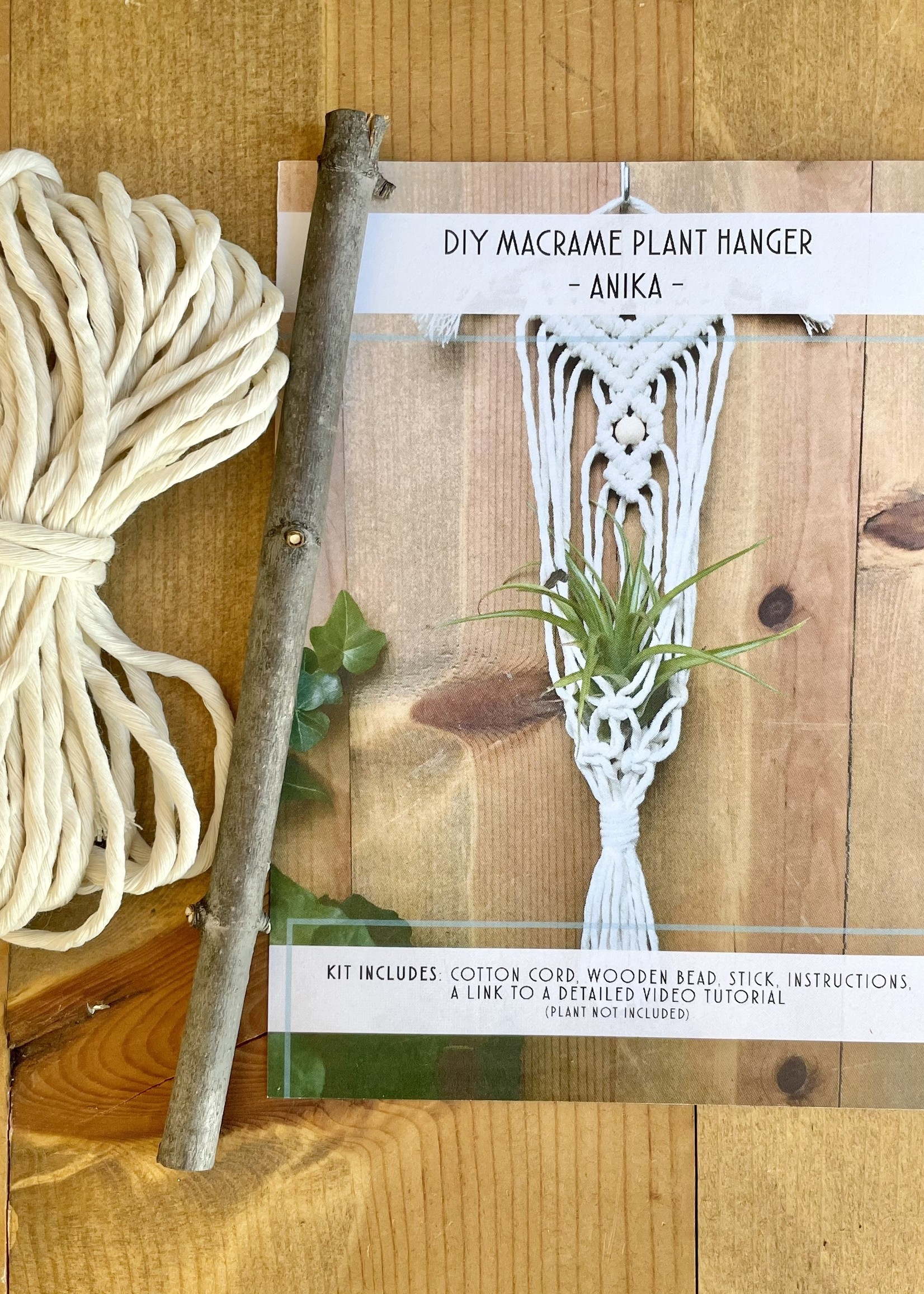DIY Macrame Air Plant Hanger Kit - The Anika