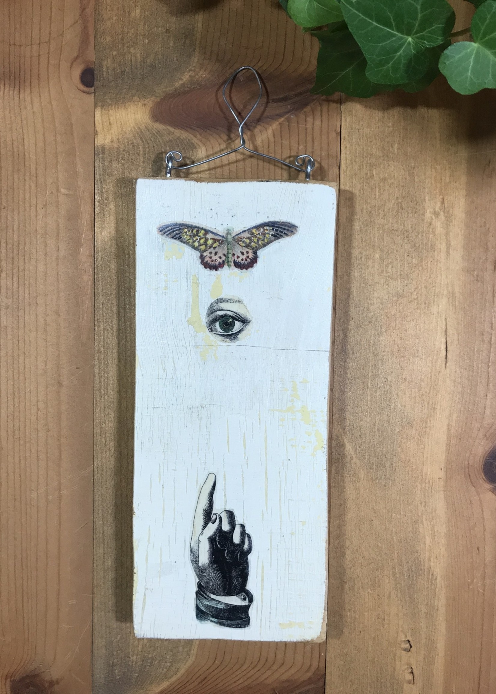Butterfly, Eye, Pointer plaque
