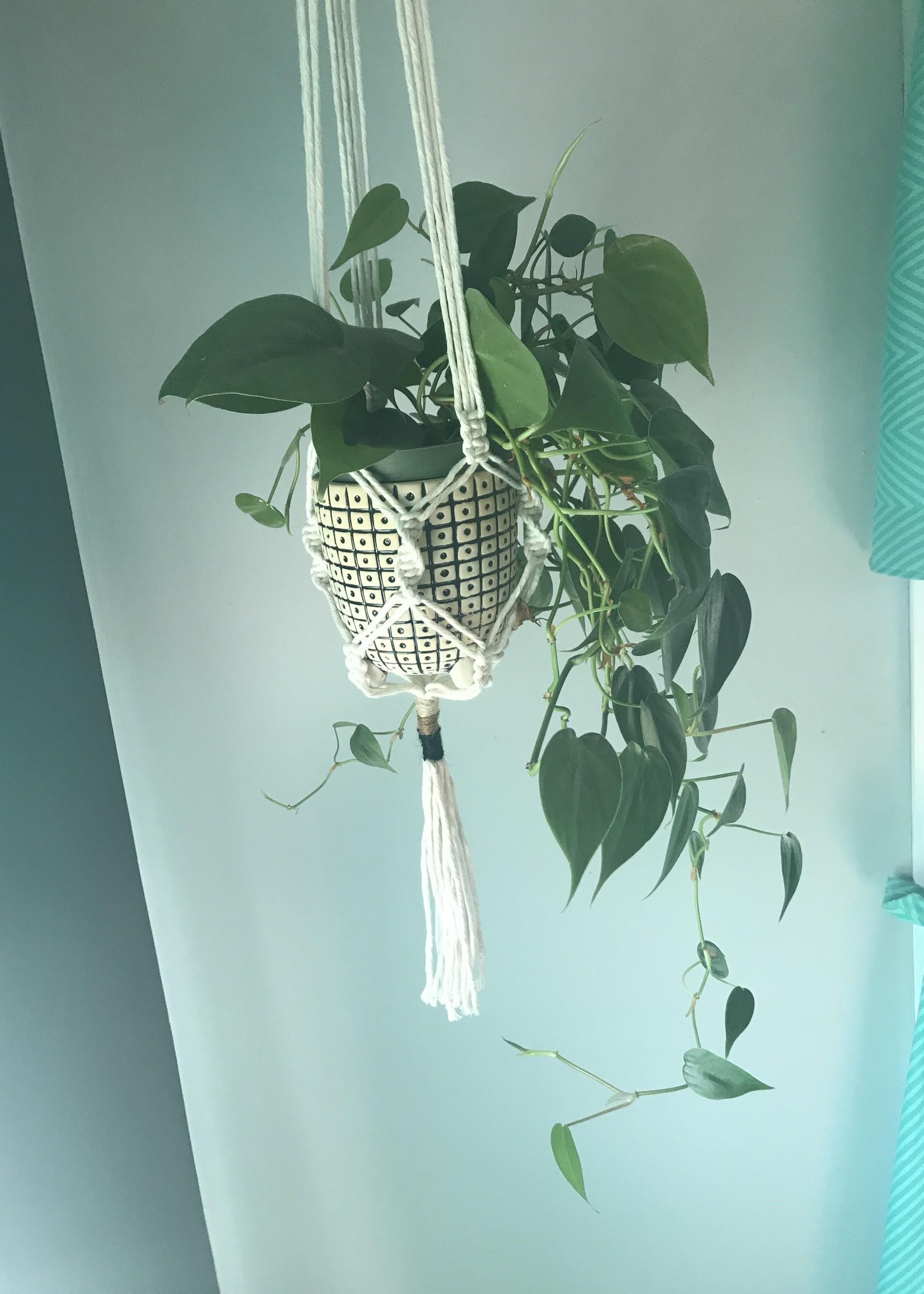 Yarn Wrap Macrame Plant Hanger