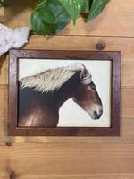 Belgian Draft Horse - Jeff Bucklew
