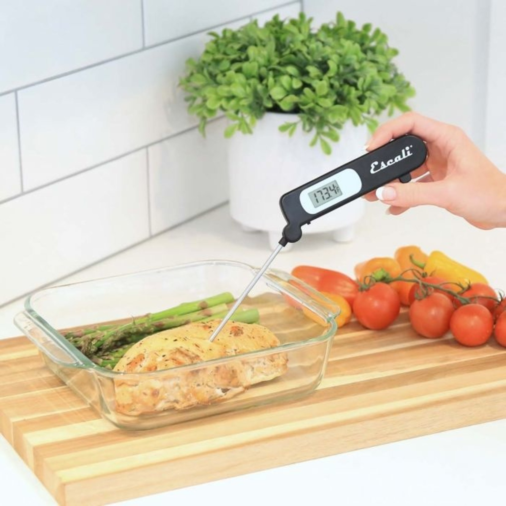 Escali Folding Digital Thermometer