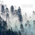 Cedar Mountain The Quieter You Become Magnet