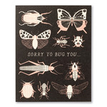 Love Muchly Sorry to Bug You