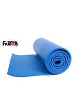 World Famous WFS Backpackers Foam Sleeping Pad