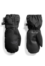 North Face North Face Toddler Mitts