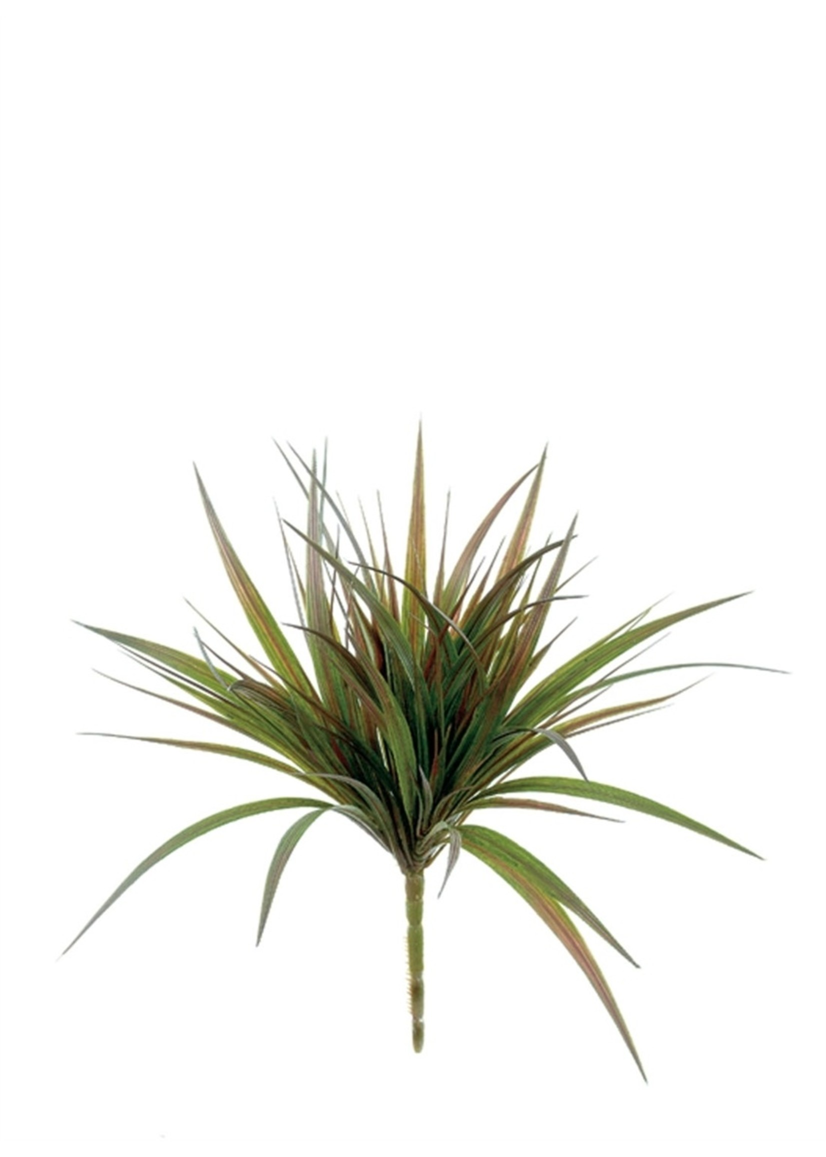 sullivans Wild Grass Pick