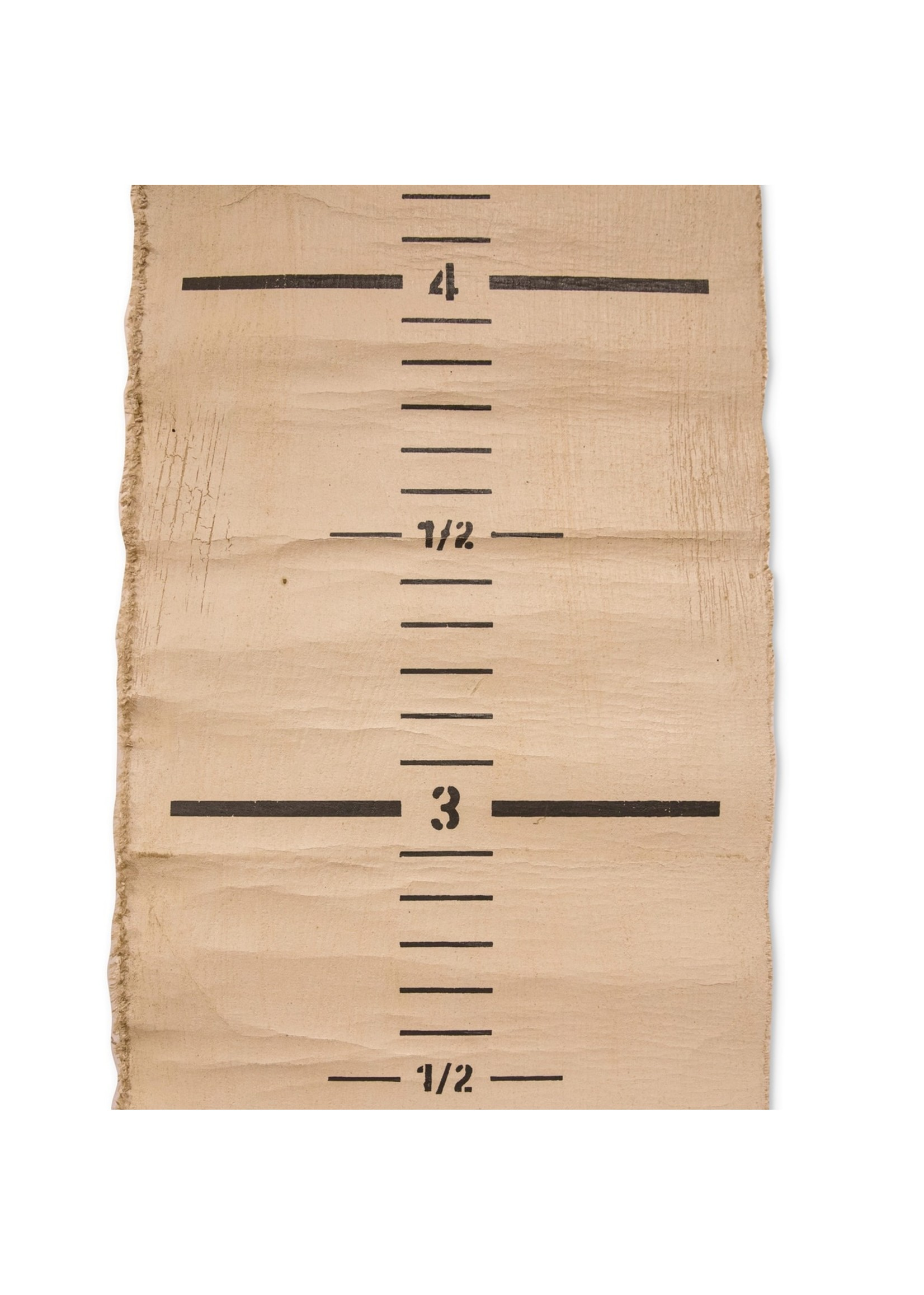 Sugarboo Canvas Growth Chart