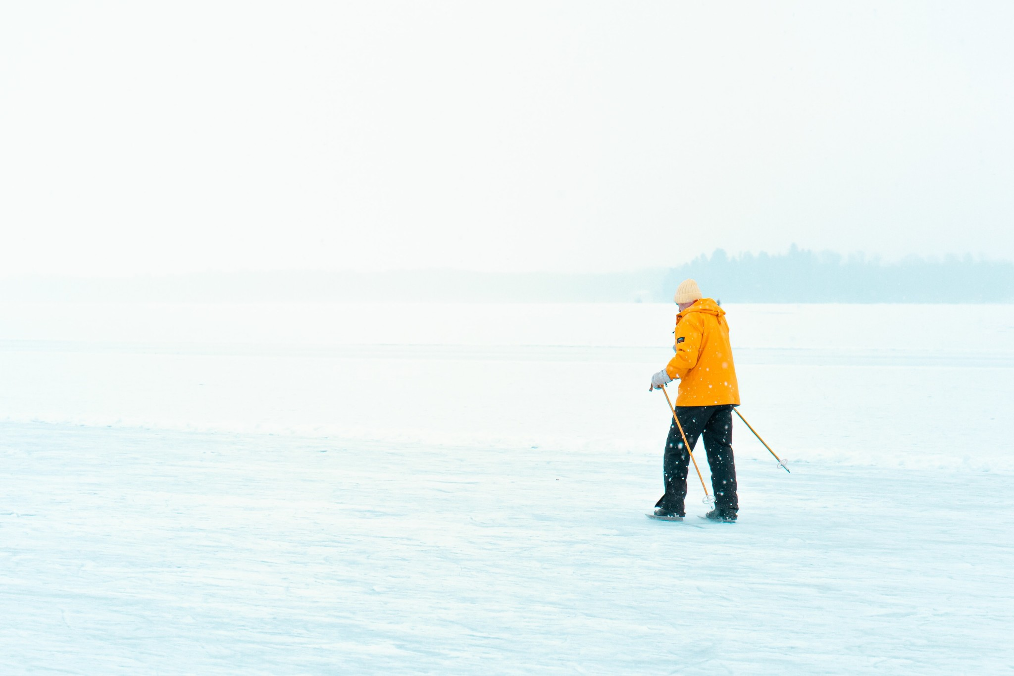 5 Reasons to switch to Nordic