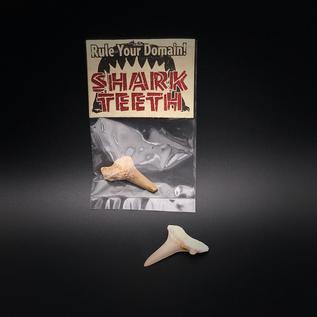 Hex Shark Tooth