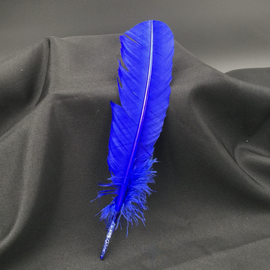Blue Feather Quill Pen