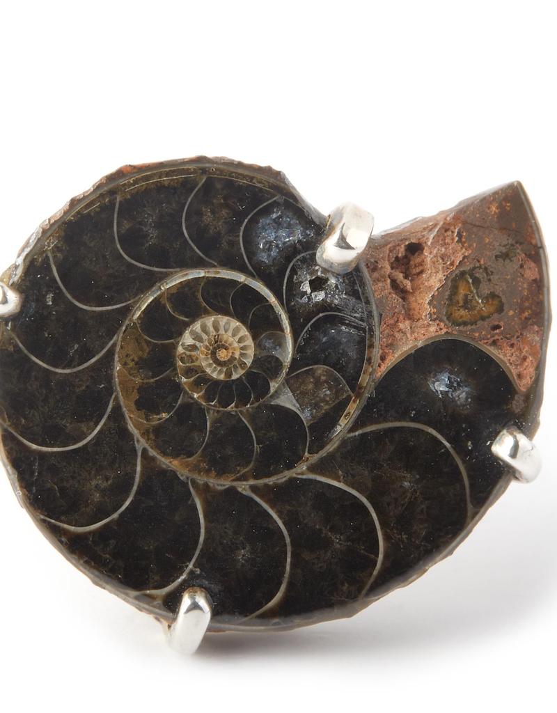 Sterling Silver Medium Madagascar Ammonite Cufflinks