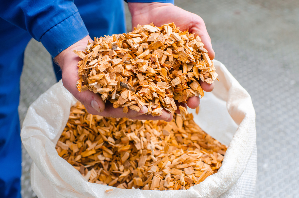 Pellets vs Chips: What's Better for Smoking Your Meat?