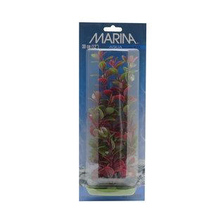 "Marina Marina AquaScaper Red Ludwigia 8"""