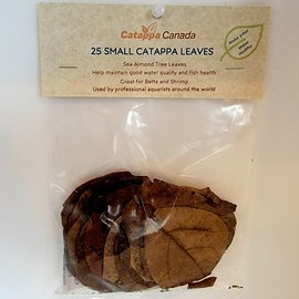 Almond Leaves - Small