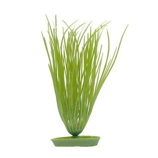 """Marina AquaScaper Hairgrass 8"""""""