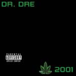 DR. DRE 2001 (2LP)